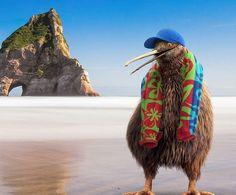 Kiwi, Camel, Animals, Animales, Animaux, Camels, Animal, Bactrian Camel, Animais