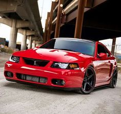 203 best 99 to 04 mustangs images snakes new edge mustang rh pinterest com