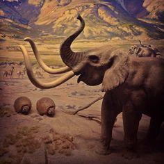 Prehistoric (via @toujoursfrais)