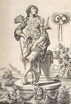 John Brown, Myographia nova, 1687