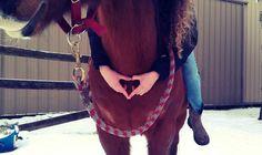 #horselove #cowgirl #horse