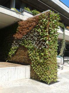 Realizzazione verde verticale - Meda (MB)