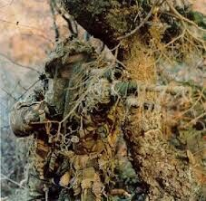 Can you spot the sniper...Quick! you have 5 seconds