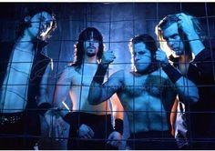 Sam Hain, Danzig Misfits, Glenn Danzig, Musicians, Biscuits, Christ, Daddy, Joker, Sugar