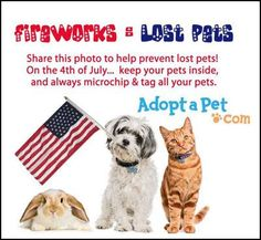 Happy 4th of July friends, Please remember on this 4th of July to be mindful of your pets, all to often when I'm out on my runs the fallowing day I find many of your pets lost because of the crackling pops & loud booms from our fireworks shows. Please make sure your pets are secure and comfortable so that they don't get spooked and come up missing the next day.