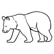 Výsledek obrázku pro medvěd omalovánky