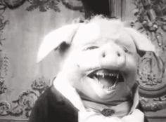 Post with 0 votes and 91 views. Creepy pig from a silent 1907 french film, Le Cochon Danseur Iskra Lawrence, Creepy Vintage, Vintage Halloween, Halloween Photos, Halloween Humor, Halloween Party, Creepypasta, French Film, The Darkness