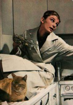 Famosos con Mascotas Audrey Hepburn