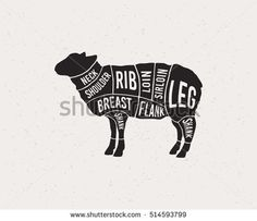 Meat cuts. Diagrams for butcher shop. Scheme of lamb. Animal silhouette lamb. Vector illustration.