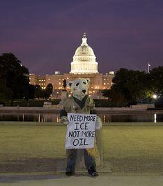 Protester at U.S Capitol