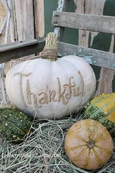 Do you like this idea? Maybe a burlap bow tied around the stem and your new monogram on the pumpkin? Thanksgiving Writing, Happy Thanksgiving, Happy Fall, Thanksgiving Blessings, Thanksgiving Crafts, White Pumpkins, Fall Pumpkins, Carved Pumpkins, Grow Pumpkins