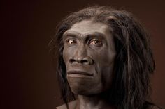 A Protein Found in the Saliva Samples of Sub-Saharan Africans Offers Evidence that Strongly Contradicts the 'Out of Africa' Theory for Human Origins. Scientists from the University of Buffalo stumb…