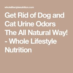 Get Rid of Dog and Cat Urine Odors The All Natural Way! - Whole Lifestyle Nutrition Cat Urine Remover, Urine Odor, Dog Urine, Odor Remover, Pet Odors, Cat Urine Smells, Dog Smells, Dog Pee Smell, Smelly Dog