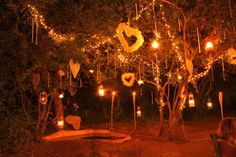 Bushveld Wedding Tree decor