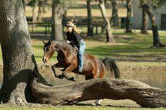 I could see Madison doing this!!! Natural Horsemanship