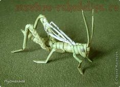 Master class in weaving newspaper: Grasshopper
