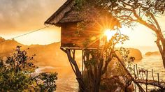 Rumah Pohon Tree House, Bali, Indonesia on the island of Nusa, Penida. Elements Of Nature, Travel Tours, Travel Destinations, Day Tours, Vacation Trips, Vacation Ideas, Solo Travel, Day Trip, Ideal Home