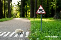 슬로워크 블로그 :: 도시의 동물들을 위한 작은 표지판, #TINYROADSIGN