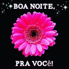 #boanoitee #boanoite #linda #noite #pravocê #sábado ✨✨✨ Boa noite, Pra você! ✨✨✨
