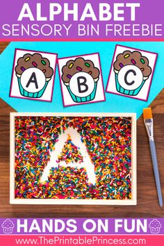 Free Alphabet Sensory Bin - It is important to use hands-on activities that are fun and interactive when teaching students to recognize alphabet letters. I wanted to share some free resources to help you create an alphabet sensory bin along with a fun way to practice writing letters.   You'll need the cupcake letter cards, which are available as a FREE download at the bottom of this blog post. You will want to print, laminate, and cut apart the alphabet cards.