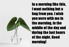 Share your good morning love messages to your special one or love one, good morning love quotes,good morning love messages in Hindi,marathi,english Good Morning Love Messages, Morning Love Quotes, First Love, English, First Crush, Puppy Love, English Language