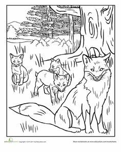 Worksheets: Red Fox Coloring Page