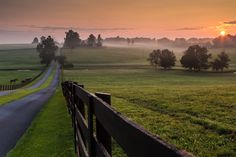 Early morning on a horse farm - I know someone who would love to live here