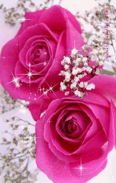 flores encontradas en la wwb