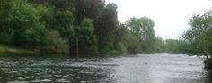 Nas correntes do Rio Tâmega …