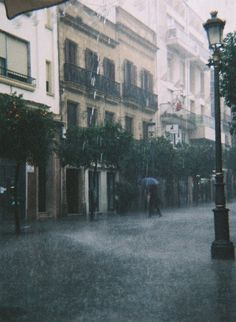 Rain in the street.