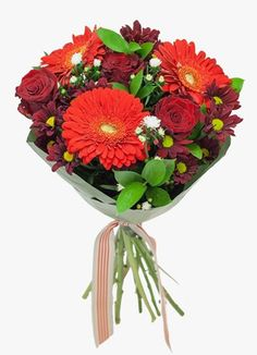 Cape Peninsula Flower & Gift Delivery for all occasions. Whether you are looking for luxury or budget, our flower shops have what you are looking for. Gift Delivery, Ruby Red, Cape, Flowers, Gifts, Mantle, Cabo, Presents, Favors