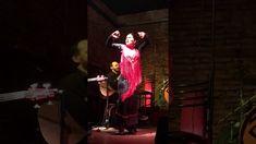 240 Ideas De Tablao Flamenco Arte Gitano Tablao Flamenco Flamenco Gitanas