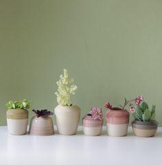 Grüner Daumen: Keramikvasen im Set. Flora / urban jungle: six beautiful handmade vases for plants by s_wellmeier via DaWanda.com