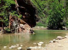 13 Utah Hikes so Easy that your granmda can come along: Riverside Walk, Zion National Park Zion National Park, National Parks, National Forest, Places To Travel, Places To See, Utah Parks, Utah Vacation, Greece Vacation, Nevada