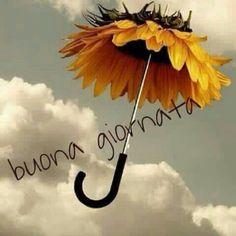 Piove Buongiorno immagini bellissime Butterfly Art, Emoticon, Good Morning, Image, Instagram, Anna, Night, Friends, Google