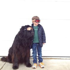 Today wed like to introduce you to Stasha Becker aka @Stasha Becker, the mother and photographer of her 4-year-old son Julian and their huge dog, a five-year-old Newfoundland named Max.