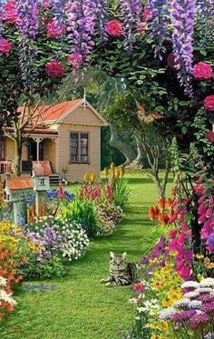 8 Flower Landscape Ideas For Your Garden – Garden Ideas 101 Beautiful Nature Wallpaper, Beautiful Paintings, Beautiful Landscapes, Beautiful Gardens, Beautiful Flowers, Beautiful Places, Flowers Nature, Beautiful Homes, Flower Landscape