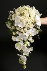 brudebuketter - Google-søk Lily Bouquet, Succulent Bouquet, Hand Bouquet, Cascade Bouquet, Cascading Bouquets, Simple Wedding Bouquets, Bride Bouquets, Simple Weddings, Floral Bouquets