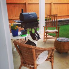 Back patio and my son fito
