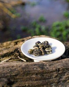 Der Frühling rückt immer näher! Zur aufblühenden Natur passt perfekt unser Organic Dragon Pearl Jasmintee. Der mit frischen Jasminblumen aromatisierte Tee ist duftig und floral und die perfekte Begleitung ins Frühjahr. Entdecke ihn jetzt in unserem Online Shop! 😏 Was ist euer Lieblingstee für den Frühling? . . . #friendsoftea #frühling #jasminetea #jasmintee #dragonpearls #tee #tea #organic #bio Food, Types Of Tea, Essen, Meals, Yemek, Eten