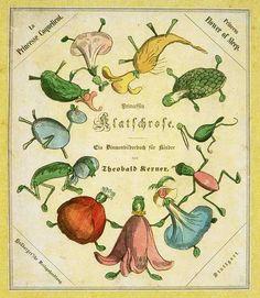 From the book Prinzessin Klatschrose. Ein Blumenbilderbuch für Kinder by Theobald Kerner. 1851.