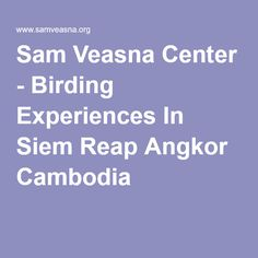 Sam Veasna Center - Birding Experiences In Siem Reap Angkor Cambodia