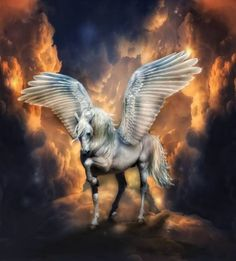 Unicorn #MythicCreatures