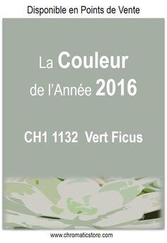 La couleur de l'année 2016 CHROMATIC : Vert Ficus CH1 1132. www.chromaticstore.com