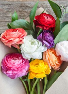 Blooms (via thebouqs.com).