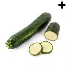 Imagen en la que se ve el plural del concepto calabacín Cucumber, Zucchini, Vegetables, Food, Vegetables Garden, Concept, Summer Squash, Meal, Eten