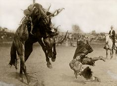 Rodeo Hall of Famer Bonnie McCarroll's fall in her debut at the Pendleton Round-Up presaged her fatal accident there in 1929  http://www.photographsofthewest.org/exhibit/page/4/
