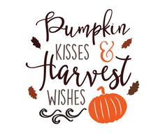 Free SVG cut files - Pumpkin Kisses & Harvest Wishes