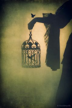 Explore inspirational, rare and mystical Rumi quotes. Here are the 100 greatest Rumi quotations on love, transformation, existence and the universe. Dark Fantasy, Fantasy Art, Art Noir, Bird Cages, Bird In A Cage, Gothic Art, Dark Gothic, Conte, Writing Inspiration