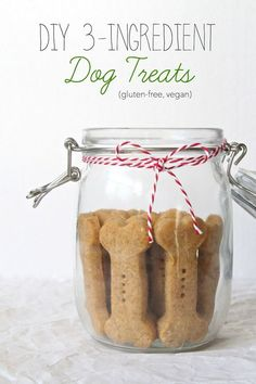 DIY 3-Ingredient Dog Treats | Gluten-free, Vegan | The Plant Strong Vegan